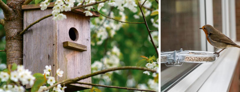Vogelvoer en vogelhuisjes voor tuinvogels | GroenRijk Beneden Leeuwen