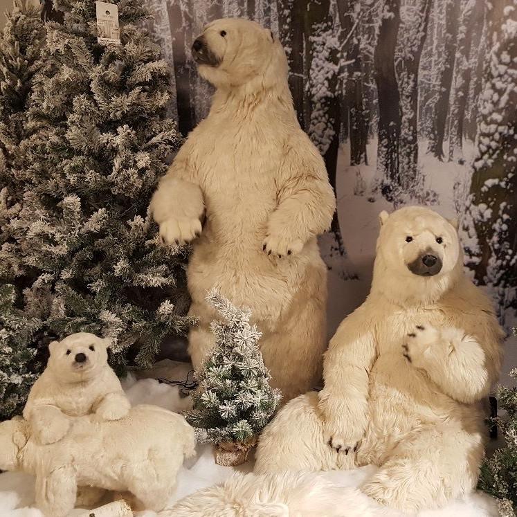 GroenRijk voor de perfecte Kerst nabij Nijmegen